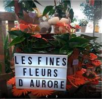 Les fines fleurs d'Aurore